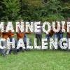 mANNEQUIN_CHALLENGE.jpg